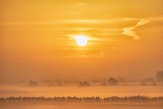 Fenland Misty Sunrise