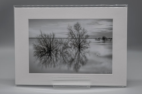 Ouse Washes Monochrome Reflections