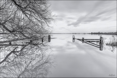 Ouse Washes Flooding at Sutton Gault