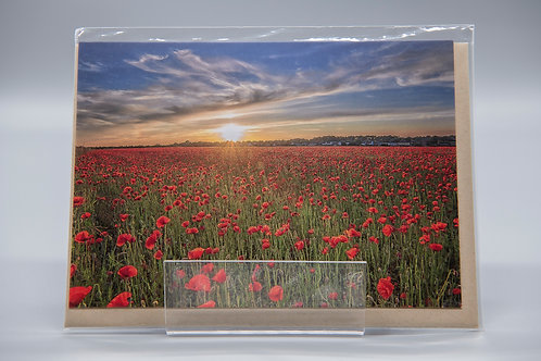 A6 Greetings Card Suffolk Poppies