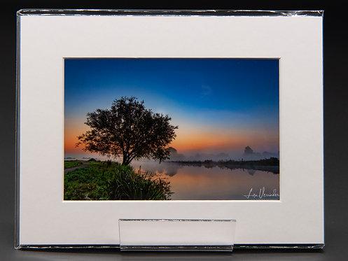 Lone Tree Dawn Ely Riverside