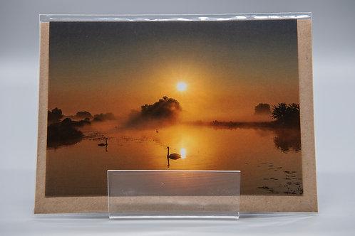 A6 Greetings Card Swan Sunrise