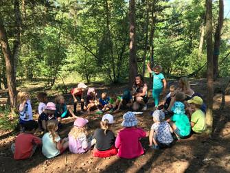 Strombulíni s Ťuíky v lese 39. týden