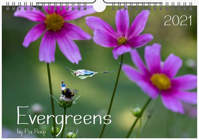Kalender Evergreens.JPG