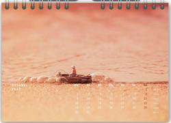 Tischkalender Mikrokosmos 10