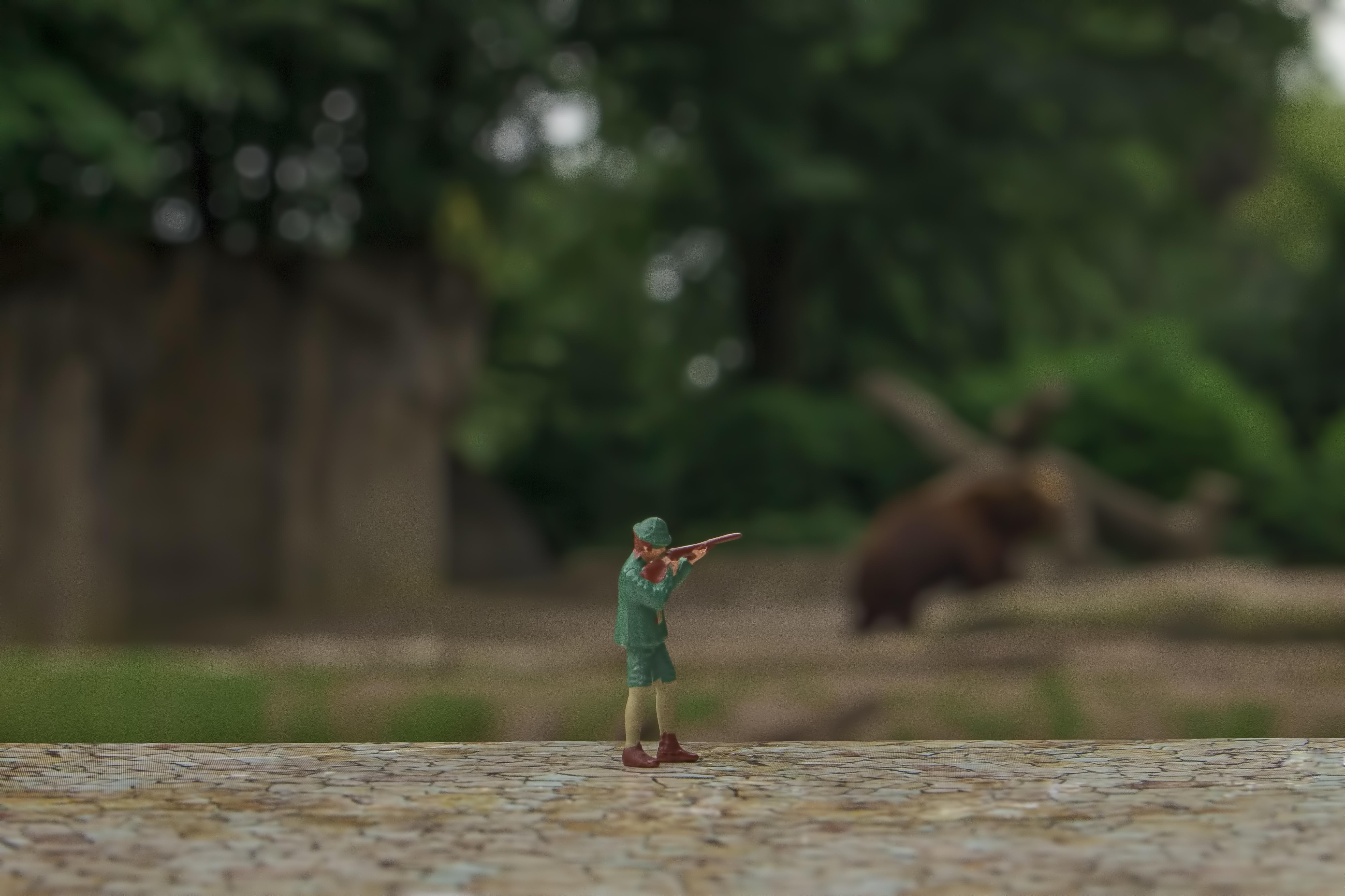 Bärenjagt