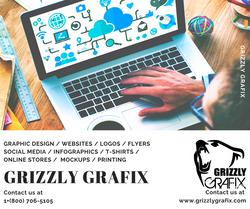 GRIZZLY INFOGRAFIX