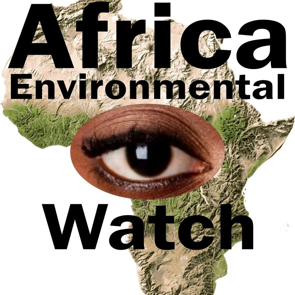 Africa Environmental Watch