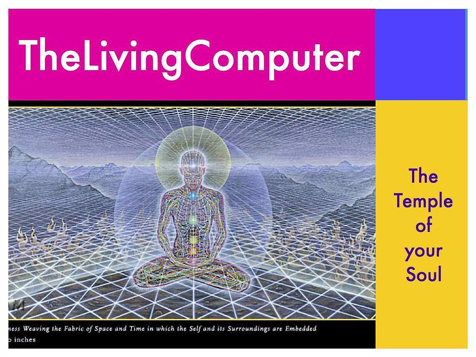 Living Computer.008_edited.jpg