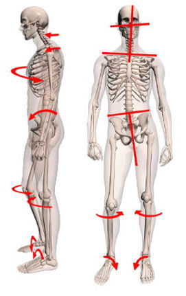 feet-posture copy.jpg