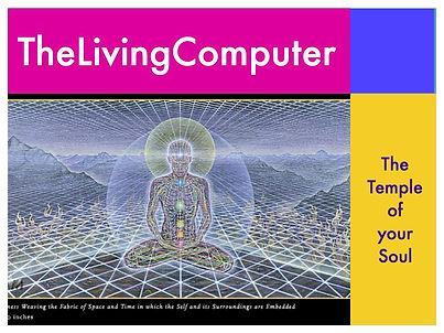Living Computer.008.jpg