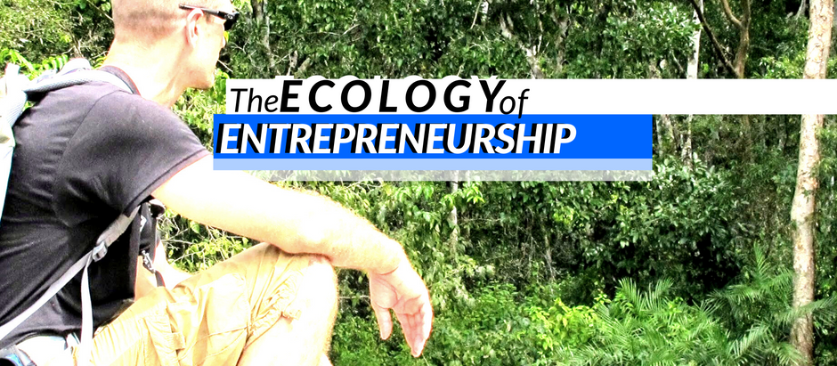 The Ecology Of Entrepreneurship