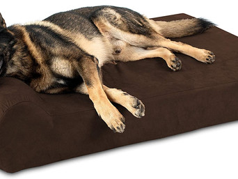 Best Dog Bed Made In USA 2021