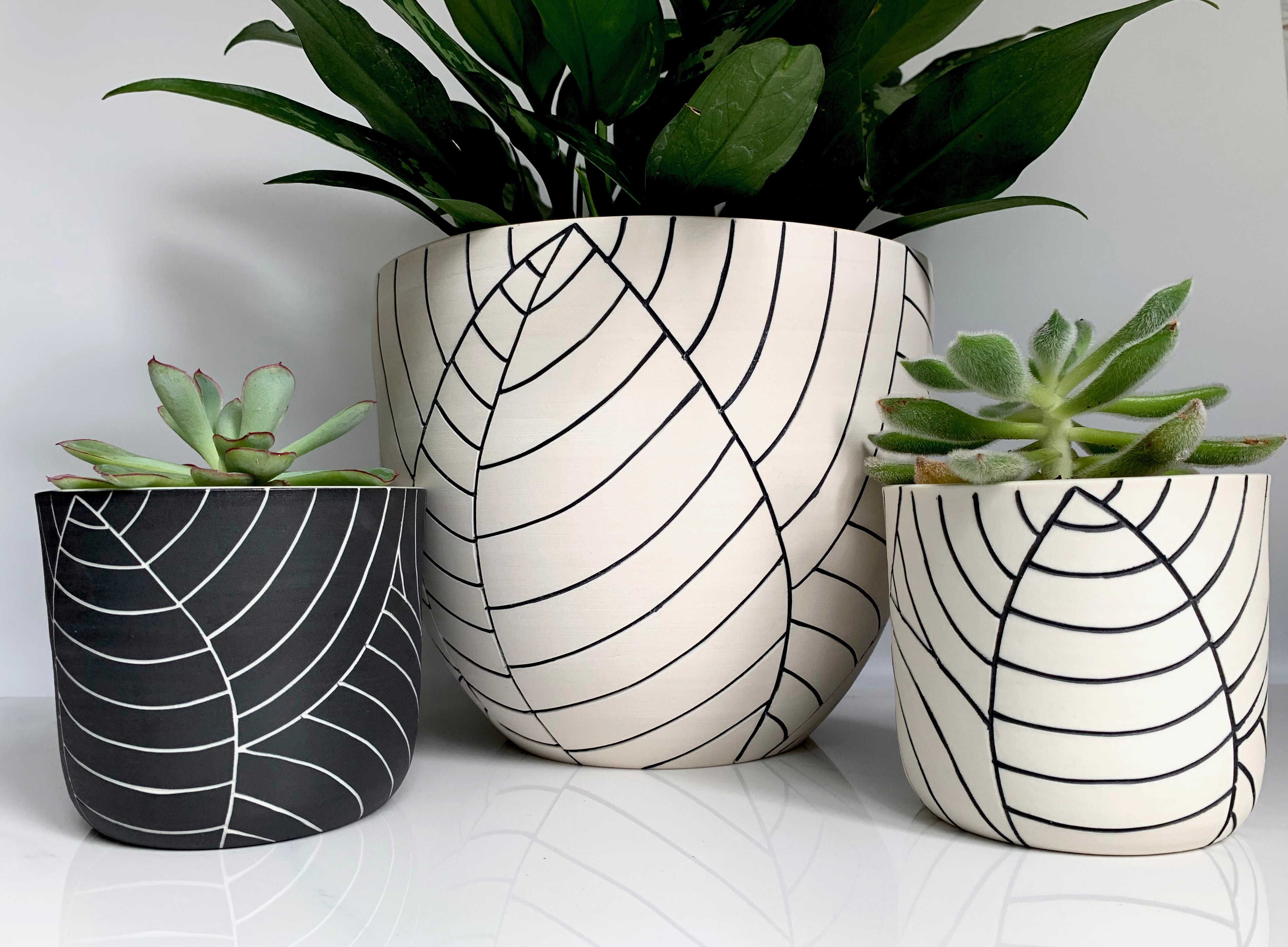 carvedleafplanters