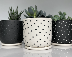 studded planters with drain and saucers