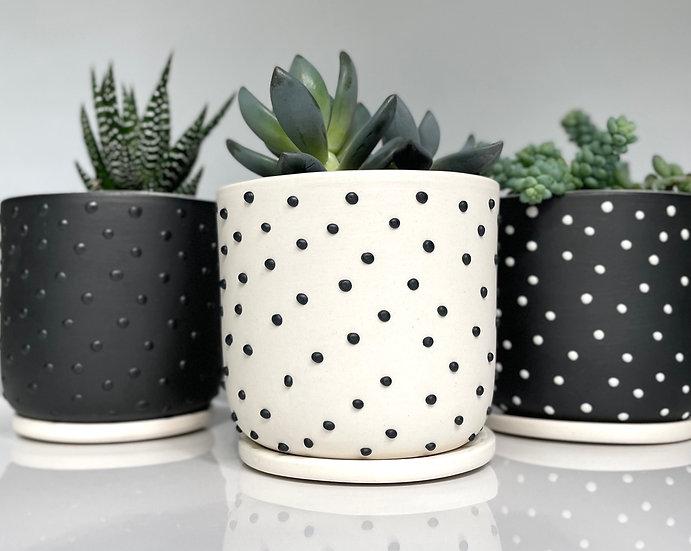 white studded planter
