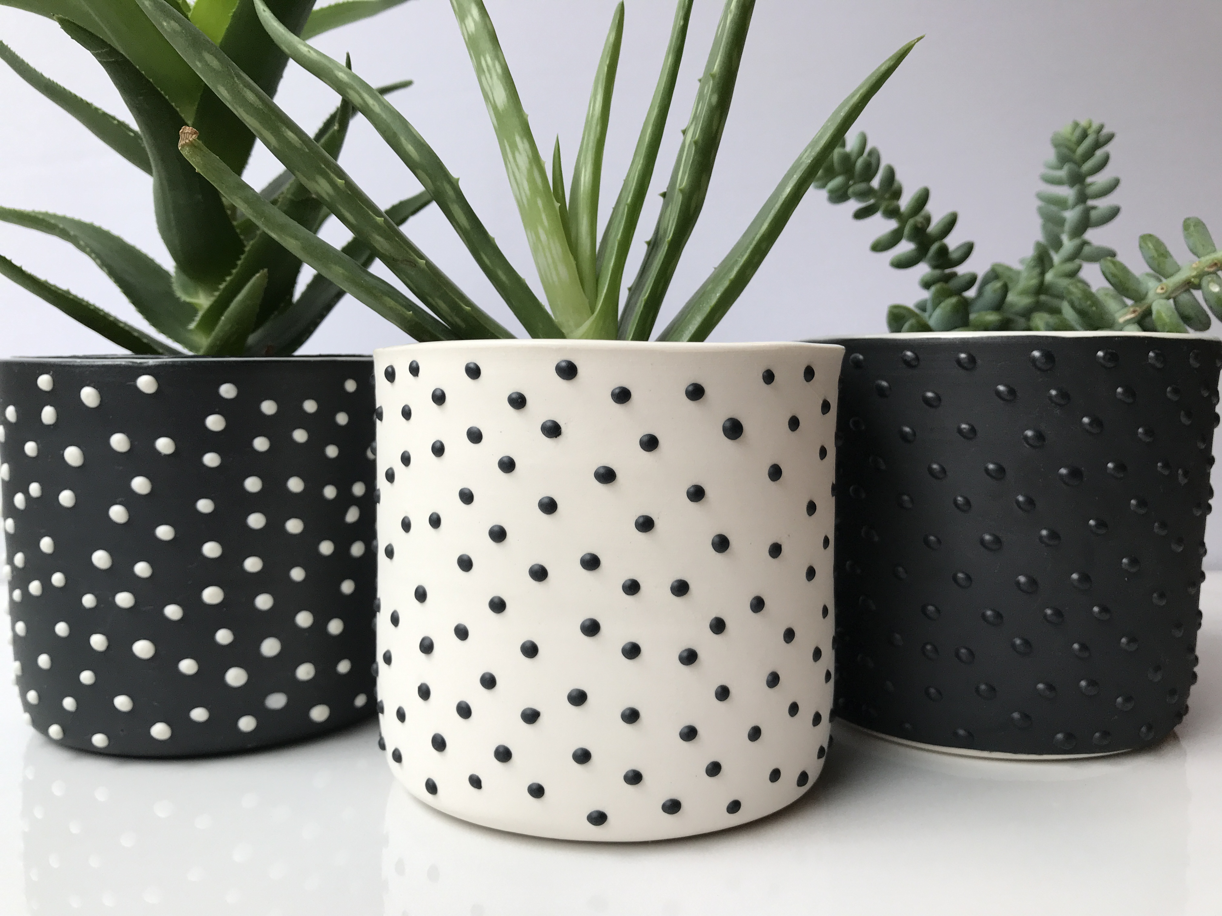 studded succulent planters