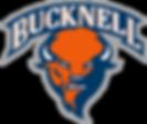 1200px-Bucknell_Bison_logo.svg (2).png