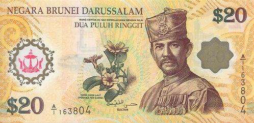 Brunei, 2007, 20 Ringgit, Polymer, First Prefix A/1