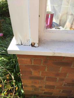 Rotten Sash Window