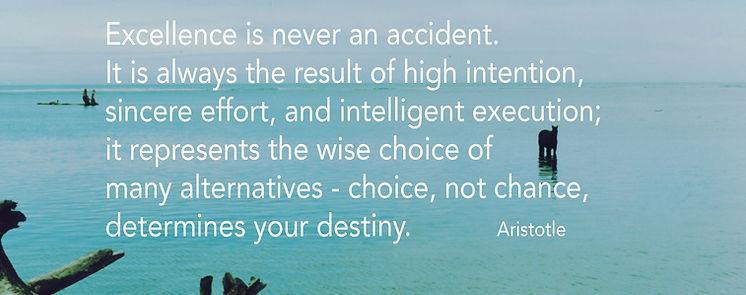 aristole_inspiration.jpg
