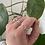Thumbnail: Strawberry quartz ring