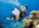 dive master.jpg