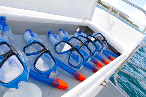 snorkel punta cana
