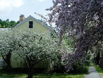 春のウィリアムズバーグ