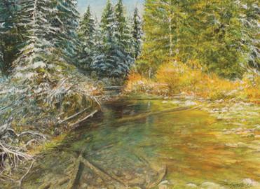 Hidden Waters of Cottonwood Creek