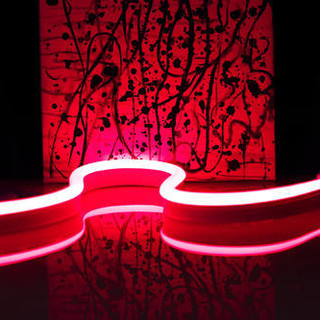 flexible-led-neon-lights-500x500.jpg