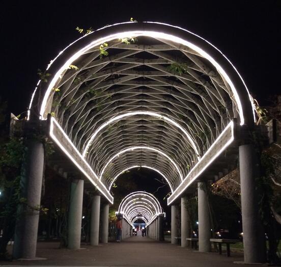 Neon Lighting Dubai