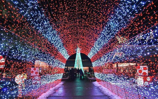 Lighting Tunnel, Lights rentals, Lighting decoration company, lights rentsl dubai.