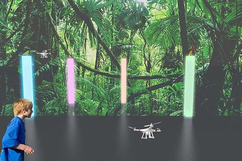 Drone Game -Hit the Bird -  #RF043