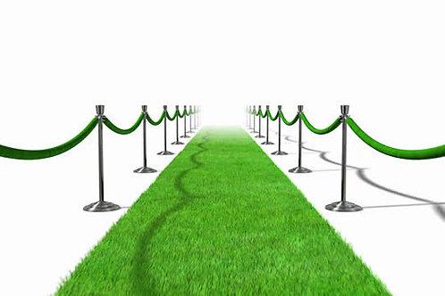 Grass Carpet  -  #RF082