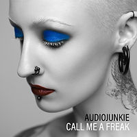 audiojunkie pop musician producer songwriter call me a freak