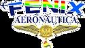 fenix logo 123 - copia.png