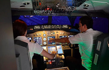 737 simm.jpg