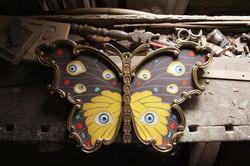 A Metamorfose do Olhar