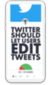 editTwitter.png