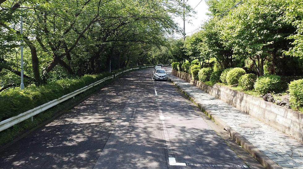 kousha2.jpg
