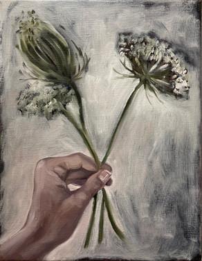 hand with Aethusa cynapium