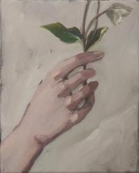 hand with pasque-flowerm