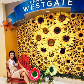 Westgate Fun