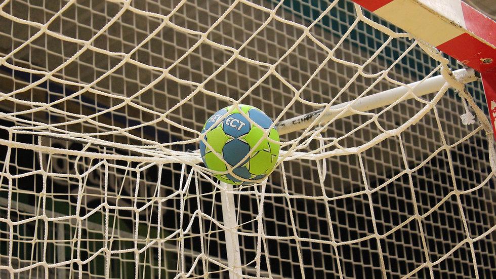 Ballfangnetz für Handball und Hallenfußball - 3,0 mm Stärke - 100 mm Maschenweite - Polypropylen - knotenlos