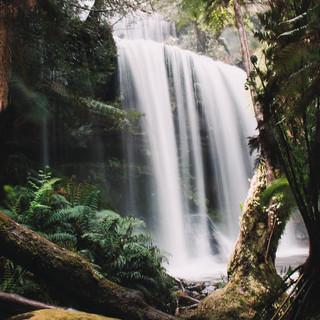 Russel Falls.jpg