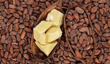 Men's Cocoa Butter & Shea Butter  Lotion