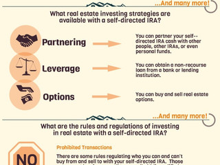 Harold Willig: How to Use a Self-Directed IRA Assets for Real Estate Investing [Infographic]
