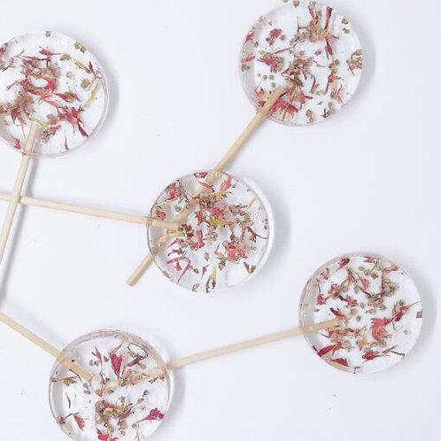 Lolly eetbare bloemen - korenbloem en struikheide (vanaf 20st)