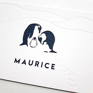 Maurice Plan Mien.jpg